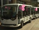 Ninh Thuận đưa xe điện vào phục vụ du khách