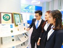 Tổng doanh thu phí bảo hiểm của Bảo Việt dẫn đầu thị trường bảo hiểm nhân thọ và phi nhân thọ