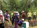 Thả 3 cá thể Khỉ đuôi lợn về Vườn quốc gia Chư Yang Sin