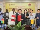 T&T Group khai phá tiềm năng to lớn từ thị trường châu Phi