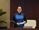 Chủ tịch Quốc hội: Xử lý nghiêm trách nhiệm vụ nhập khẩu hàng hóa vi phạm chủ quyền quốc gia!