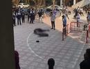 Nam sinh rơi từ tòa nhà 13 tầng trong trường Đại học Kiến Trúc xuống đất tử vong