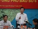 Phó Thủ tướng đề nghị Bộ GTVT điều tàu vào Bình Định ứng phó bão số 6