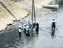 Tháo dỡ hệ thống làm sạch sông Tô Lịch, di chuyển đàn cá Koi sang Hồ Tây
