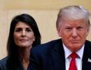 """Cựu đại sứ Mỹ tiết lộ """"âm mưu"""" liên minh hạ bệ Tổng thống Trump"""