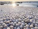 """Hàng ngàn """"Quả trứng băng"""" rực rỡ trên bãi biển Phần Lan"""