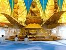 Tân Huê Viên đúc tượng Phật dát vàng: Ban Tôn giáo Chính phủ lên tiếng