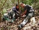 Hành trình tìm ra cheo cheo quý nghi đã tuyệt chủng 30 năm tại Việt Nam