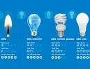 Từ hành động bật tắt chưa đến 1 giây đến chiếc bóng đèn quen thuộc của mọi nhà