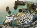 Thị trường BĐS Quảng Ninh: Doanh nghiệp tìm hướng đi riêng
