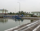 Dân hoang mang khi nước sinh hoạt bỗng dưng có độ mặn cao