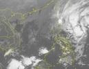 Bão Kalmaegi mạnh cấp 11 đang hướng vào Biển Đông