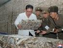 Ông Kim Jong-un phê bình gay gắt cấp dưới trong chuyến thị sát