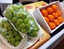 Hàn Quốc muốn bán thêm nhiều nho, lê, táo, nhân sâm…sang Việt Nam