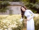 Anika Trinh Trinh nền nã với áo dài trắng và cúc họa mi