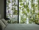 Nhà trong hẻm ở Sài Gòn tuyệt đẹp, ngập tràn ánh sáng