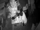 Quán cafe bị trộm đột nhập 2 lần lấy tiền