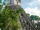 Du khách ý thức kém khắc chữ lên ngôi đền thiêng hàng nghìn năm tuổi