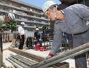 Doanh nghiệp Nhật dần từ bỏ chế độ công việc trọn đời