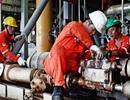 Dầu khí Việt Nam phát triển, đồng hành cùng đất nước
