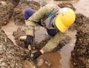 Độc đáo nghề gõ hà biển ở Đồ Sơn