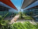 Thay đổi cách làm du lịch, Quảng Ninh được gì?