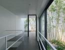 Trồng tre ngay giữa nhà, ngôi nhà Bắc Ninh gây ấn tượng mạnh bởi thiết kế độc đáo