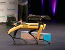 Chó robot đình đám trên Internet gia nhập biệt đội cảnh sát dò mìn của Mỹ