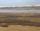 Nước biển ở Quảng Ngãi bất ngờ đổi màu đen ngòm, nổi bọt