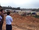 Xác minh việc cây cối chết quanh Khu liên hợp gang thép Hòa Phát