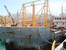 """Bình Định """"cầu cứu"""" Thủ tướng vụ tàu 67 nằm bờ vì không mua được bảo hiểm"""