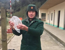 Băng giá xuất hiện tại miền núi Nghệ An