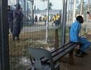 Australia huỷ luật y tế cho người tị nạn từ các trại Thái Bình Dương