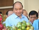 Thủ tướng: Người nông dân phải tự đổi mới, cứ làm bài cũ thì khó thành công!