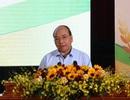 Thủ tướng: Không để nông dân bị cuốn vào vòng xoáy lừa đảo xuất khẩu lao động
