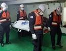 Hàn Quốc phát hiện thi thể 2 thủy thủ Việt Nam trong vụ chìm tàu