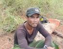 Liên tiếp phát hiện lâm tặc phá rừng tại Vườn quốc gia Yok Đôn