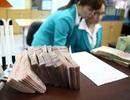 Lãi suất giảm sâu, hút ròng khỏi thị trường hơn 34,5 nghìn tỷ đồng