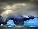 Băng biển Bắc Cực có thể biến mất sớm hơn
