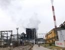 Nhiệt điện Uông Bí gặp sự cố bục ống sinh hơi: Không có thiệt hại về người