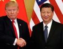 Thỏa thuận giai đoạn 1: Bước ngoặt của cuộc chiến thương mại Mỹ-Trung
