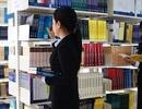 Chuyển xếp lương theo chức danh và mã ngạch văn thư