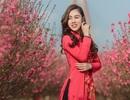 Nữ nhân viên hàng không khoe dáng nuột nà giữa vườn đào ngày Xuân