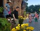 Tháp bà nghìn tuổi Ponagar Nha Trang rực rỡ sắc xuân đón khách dịp Tết