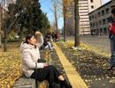Tâm sự của bà mẹ trẻ đêm 30 vừa đi vừa khóc trên đất Nhật