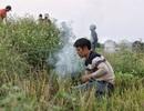 """Người dân Hà Nội kiếm tiền triệu mỗi ngày từ nghề săn """"cu tý"""""""