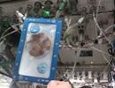 Những chiếc bánh quy đầu tiên được nướng trong không gian
