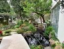 Mãn nhãn biệt thự vườn rộng 100m2 với hồ cá Koi đẳng cấp ở ngoại thành Hà Nội