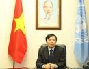 Đại sứ Đặng Đình Quý: Việt Nam hoàn thành tốt nhiệm vụ trong tháng 'rất nhiều việc phát sinh'