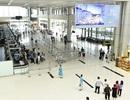 Bốn khách nữ ẩu đả tại sân bay Nội Bài vì... tranh chỗ xếp hàng